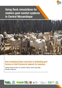 Using flock simulations for modern goat market systems in Central