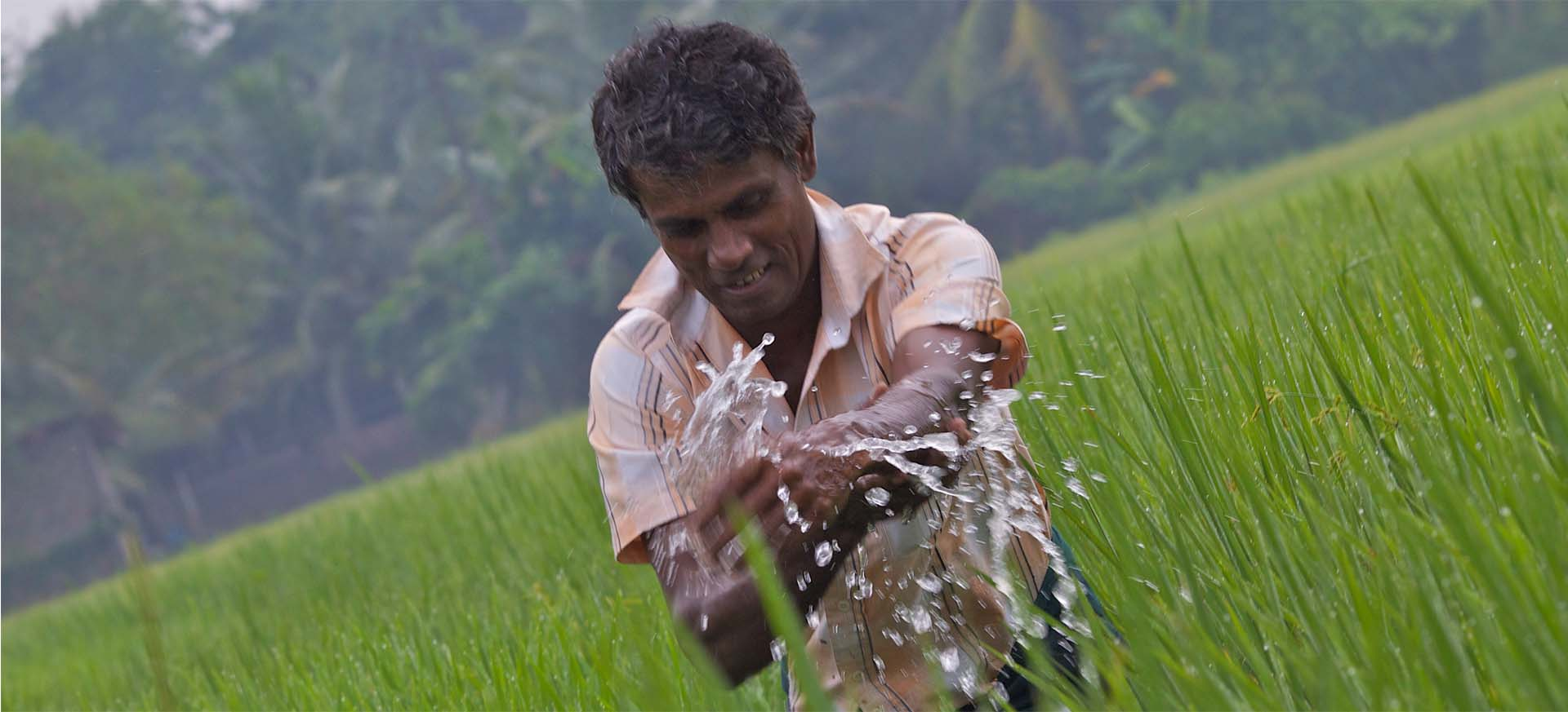 Water Information System for Sri Lanka | Water, Land and Ecosystems