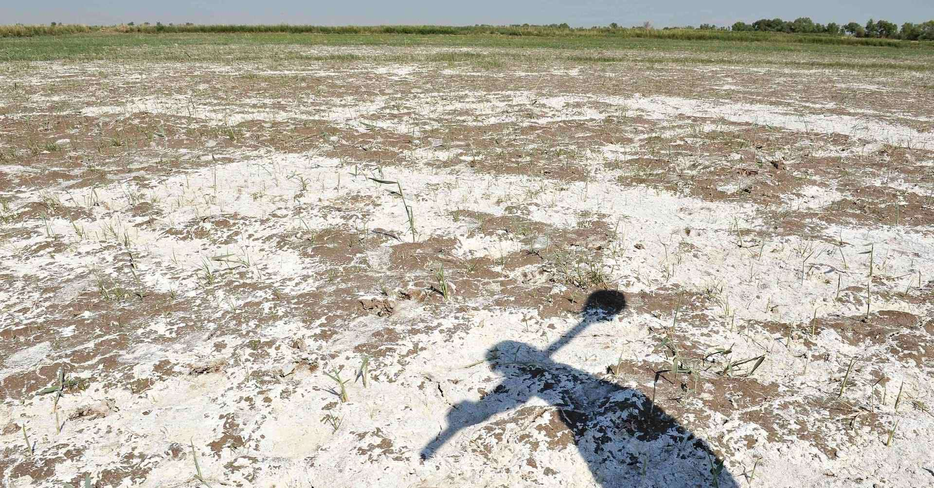 Making the case for reusing saline water and restoring for Soil salinization