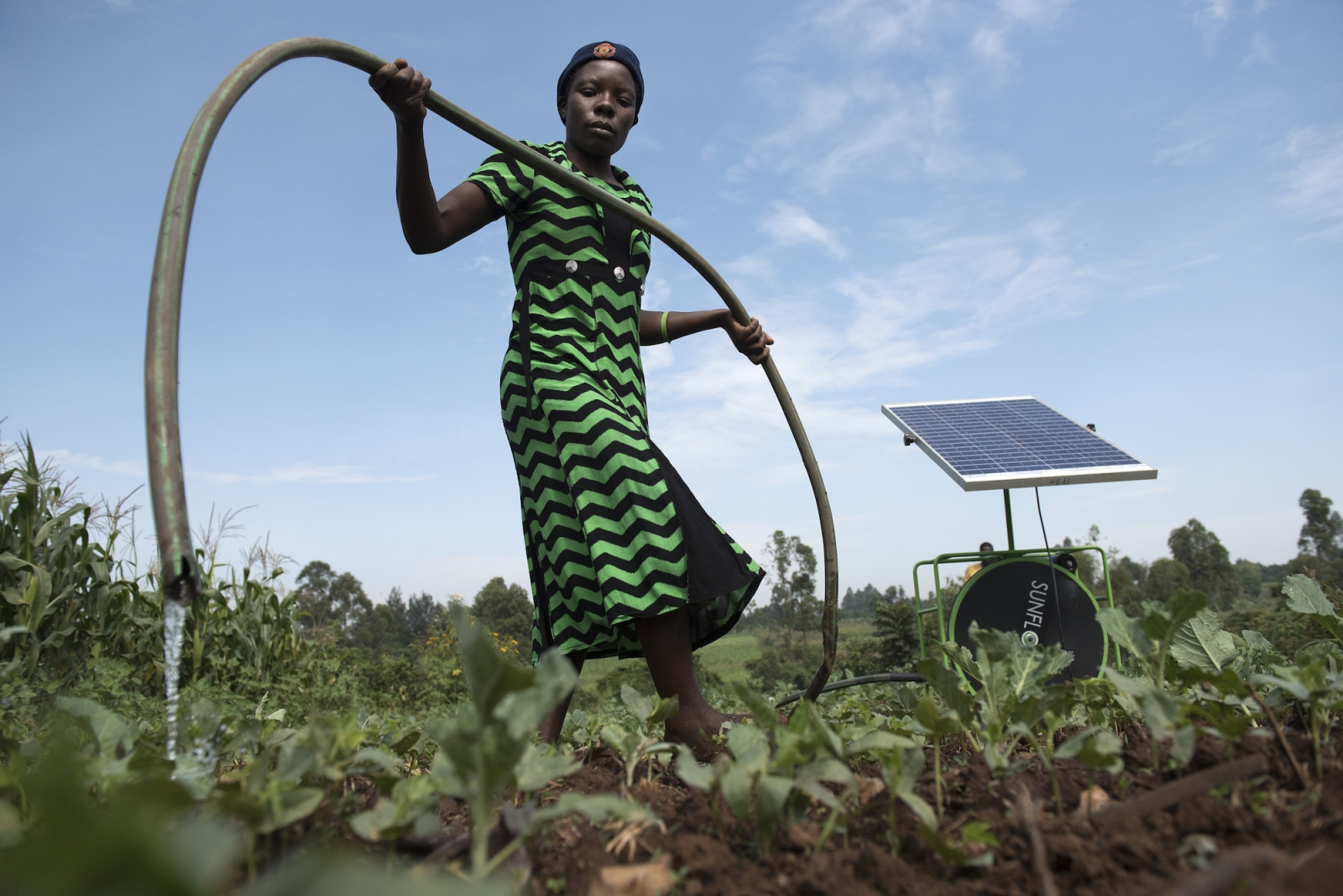 support global farmers category - HD1600×1068