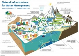 Natural infrastructure for water management. IUCN