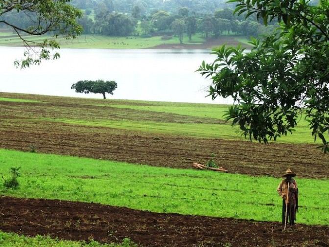 Farmers cultivate land next to a reservoir. Photo: Matthew McCartney