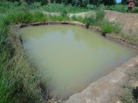 Small catchment pond. Photo Credit: Fred Kizito