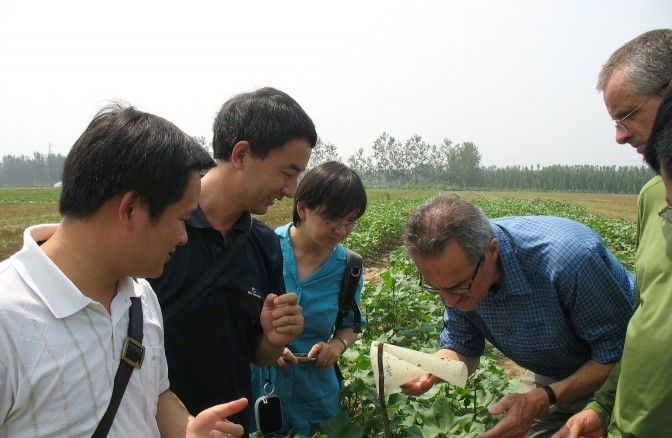 Field researchers study insects captured by stickers in the Hebei Province, China.  Photo Credit: Wei Zhang