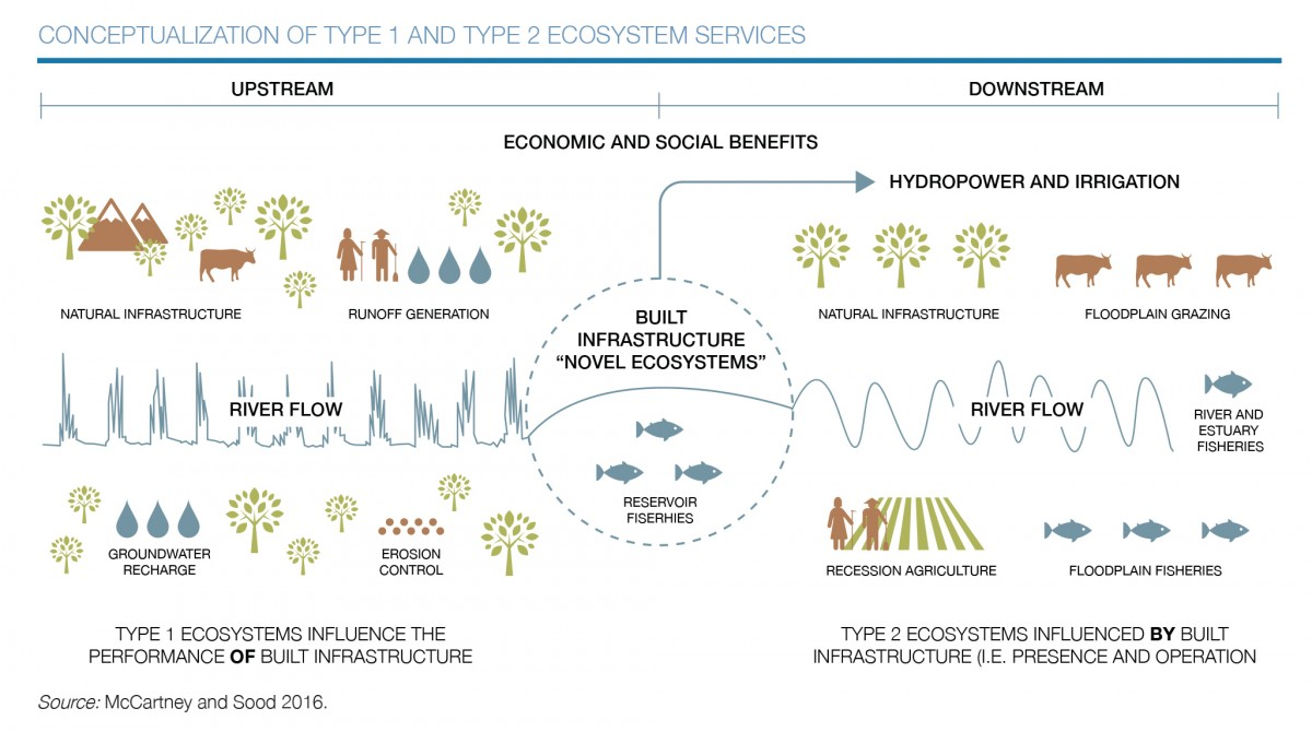 Type 1 and Type 2 ecosystem services