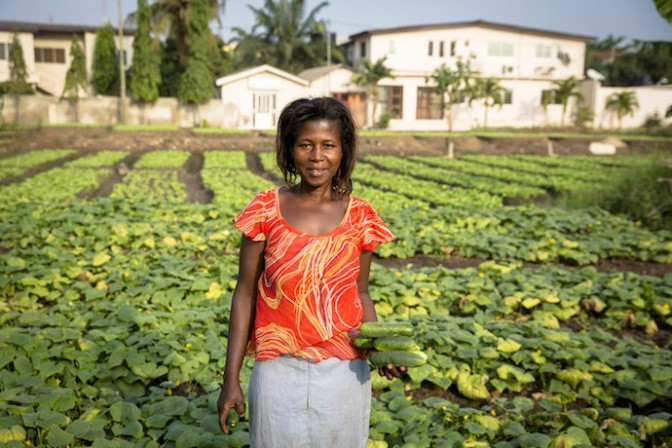 Vegetables grown using safe wastewater reuse practices in Ghana. Photo: Nana Kofi Acquah/IWMI