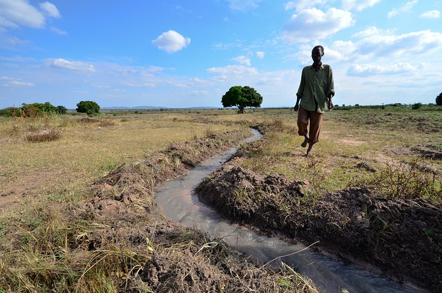 Resilience of farmers and agro-ecosystems to shocks and changes is key to sustainable agricultural development. Photo: Neil Palmer