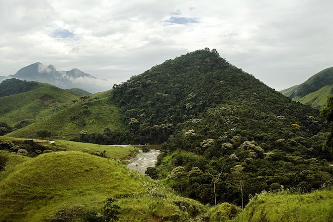 A Water Producer Program the Guandú Watershed in Rio de Janeiro state compensates landowners who protect and restore the Atlantic Forest on their lands to protect water supplies to the city.  Photo: Adriano Gambarini/TNC