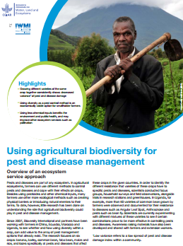 Using agricultural biodiversity for  pest and disease management