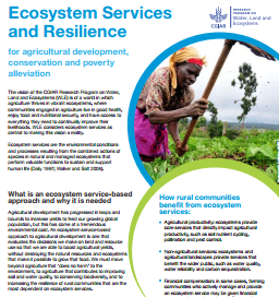 Ecosystem Services and Resilience Framework Flyer