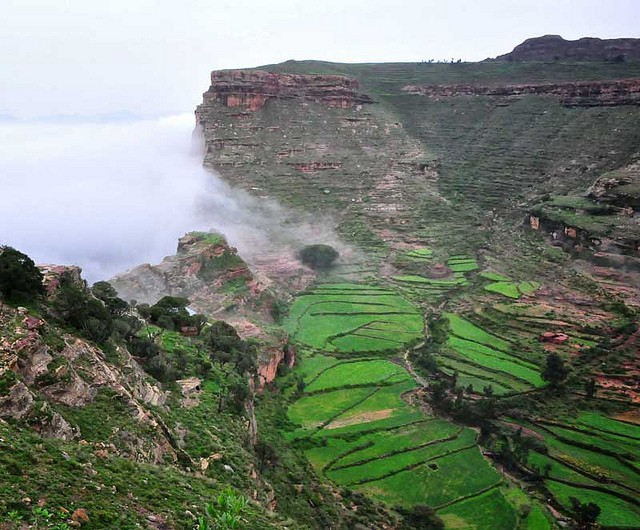 Terrace agriculture in Tigray, Ethiopia has improved production of previously degraded land. Photo: Rod Waddington on Flickr