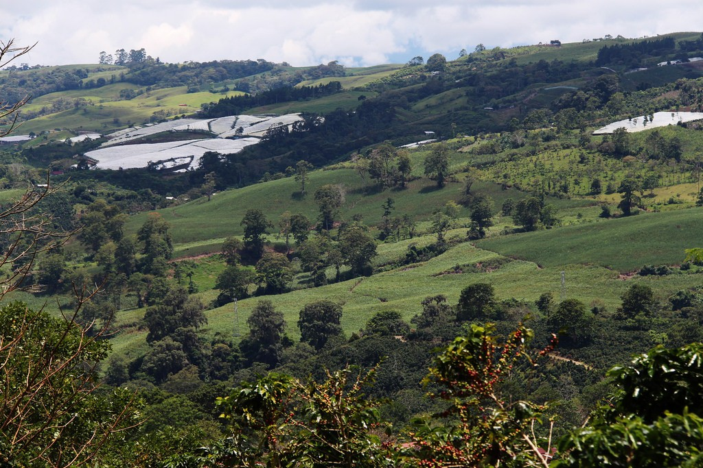 Landscape in Turrialba, Costa Rica