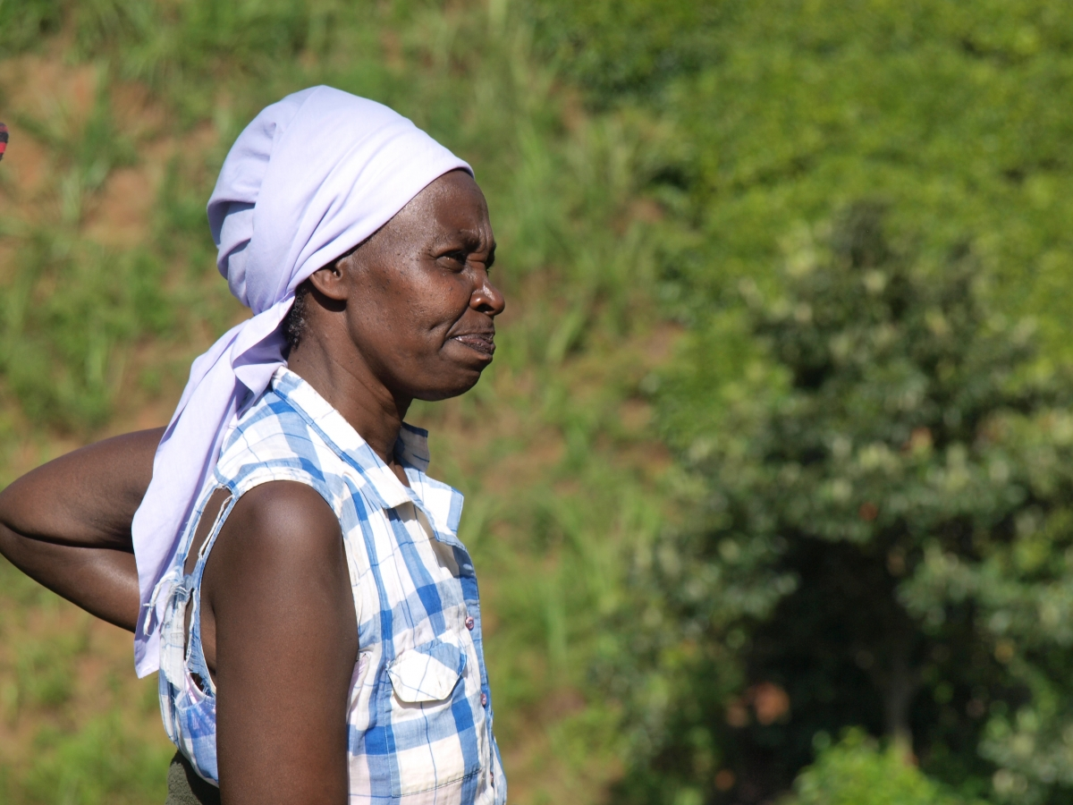 Kenyan farmer Rachel Njeri takes stock of her crops and the impacts of soil erosion