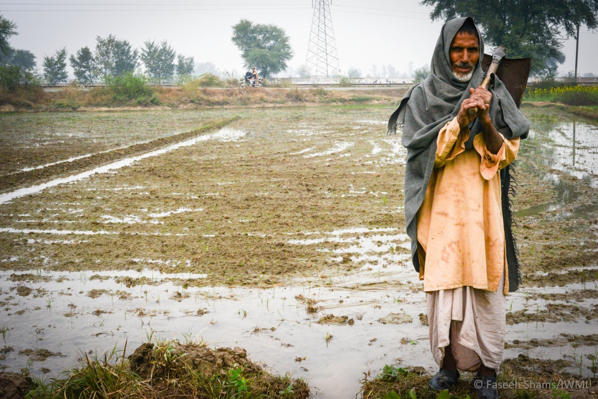 Improved water management enhances food security and economic development in Pakistan.