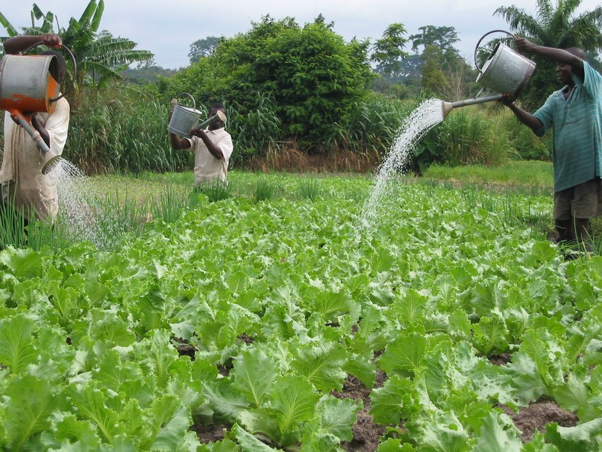 water smart investment benefits ripple beyond food security water rh wle cgiar org Center Pivot Irrigation Sub- Irrigation