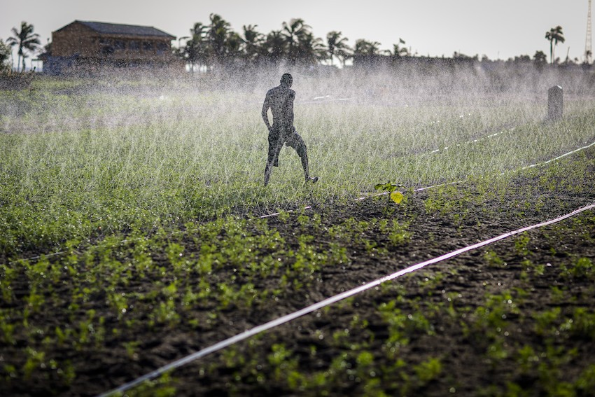 Sprinkler irrigation in Ghana
