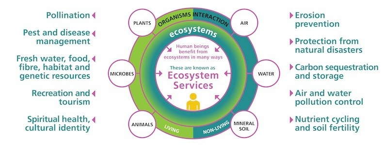 Ecosystem services conservation in a changing climate.