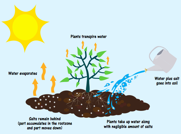 Making the case for reusing saline water and restoring for Soil zone of accumulation