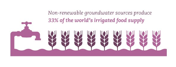 Non-renewable groundwater sources produce 33% of the world's irrigated food supply