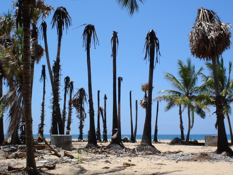 The aftermath of the 2004 tsunami on the Sri Lankan coast.