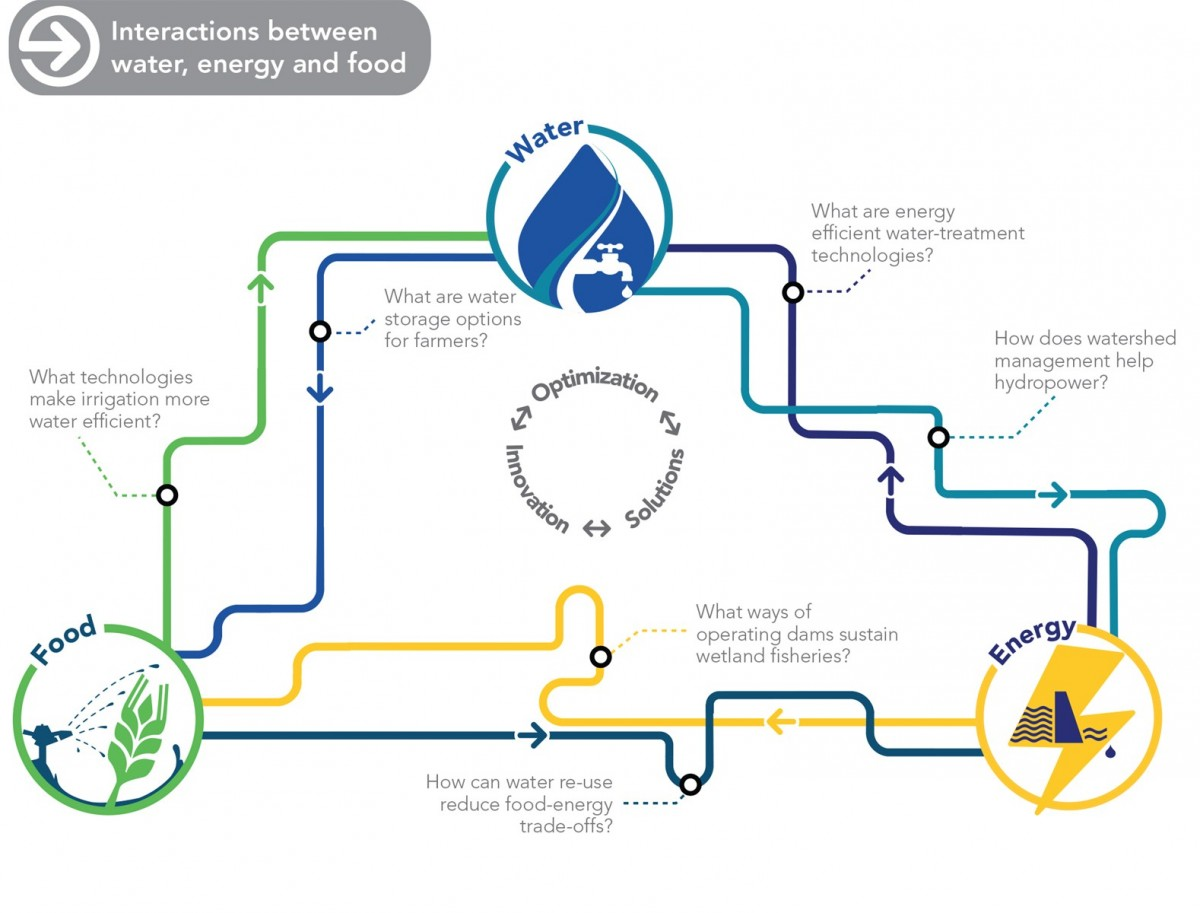 A diagram of the connections between water, food, and energy.