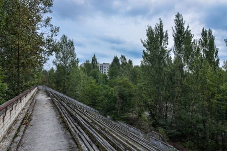 A soccer stadium at Chernobyl whose pitch has been filled with trees.