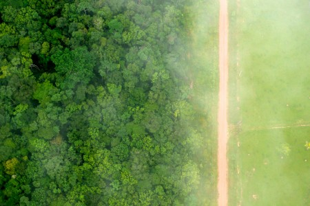 CIFOR's photo of agricultural deforestation in Brazil