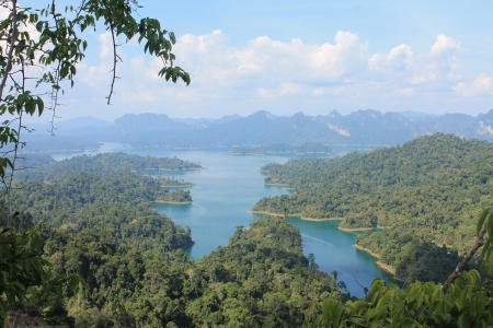 A forested reservoir catchment in Thailand.