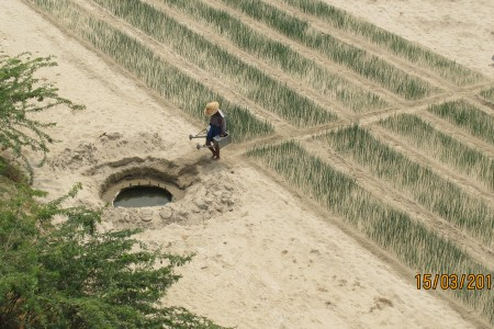 A farmer collecting water to irrigate crops in Myanmar's Dry Zone.