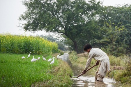 Man digging in stream in Pakistan