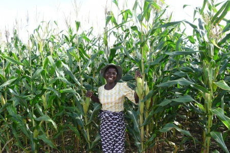Farmer leader in conservation agriculture, Malawi