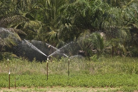 Irrigation in West Africa