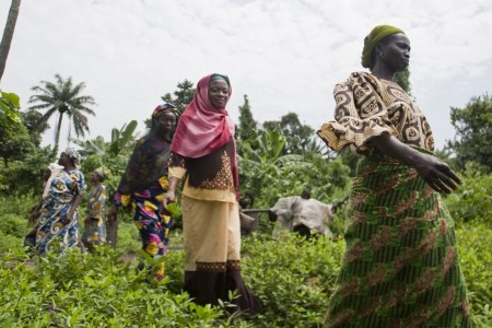 Local farmers pass by to attend a farmers meeting at Oloki Village, Osogbo, Osun state, Nigeria.