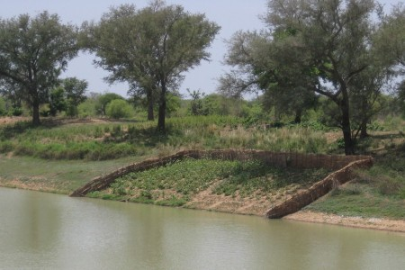 Farming on the banks of a river in Burkina Faso.
