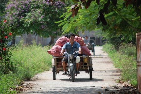 Scenes from the Mekong Delta in Vietnam V. Meadu CCAFS