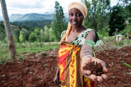 Sharifa Juma digs terraces to stop soil erosion in Tanzania.