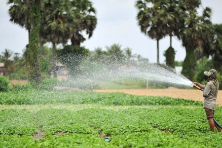 A farmer uses groundwater for irrigation in Kandal Province, Cambodia.