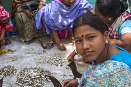 Women clean small fish in Bangladesh.