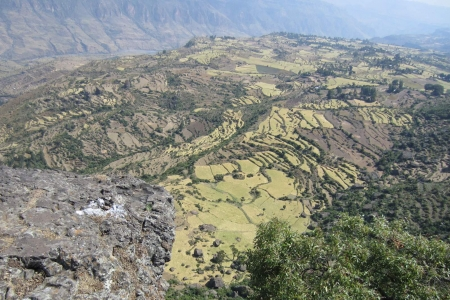 Terraces and water erosion Ethiopia