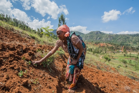 Farmers help each other to terrace the land in Lushoto, Tanzania.