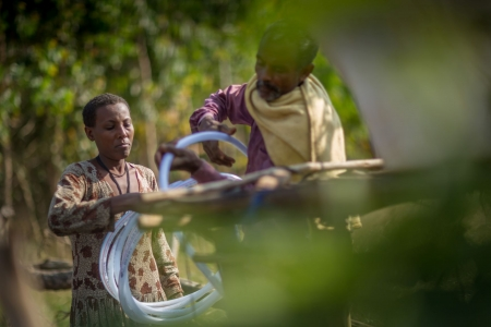 Solar powered irrigation in backyard garden, Ethiopia