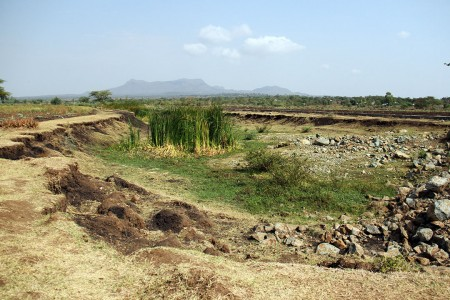 Land degradation affects 67 per cent of Africa.