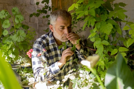 Syrian refugee having a sensory moment in his home garden soaking up the scents and sights in his home garden in Domiz Camp Garden, Iraq.
