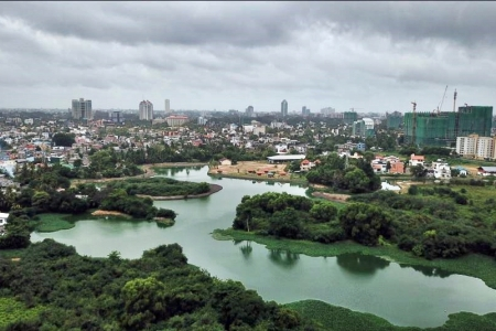 Colombo Wetlands