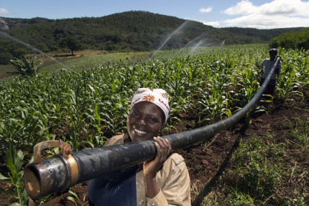 sprinkler irrigation Mozambique