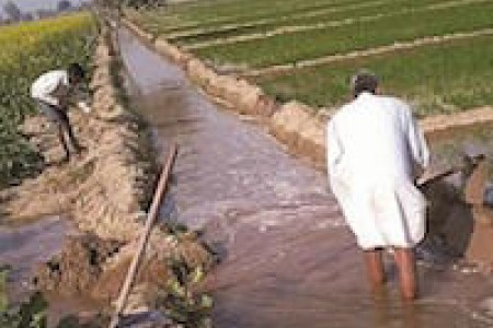 flood irrigation egypt LSIS ICARDA teaser