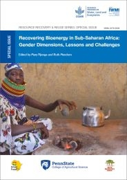 Recovering bioenergy in Sub-Saharan Africa: gender dimensions, lessons and challenges.